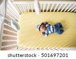 aerial view of newborn baby boy ... | Shutterstock . vector #501697201