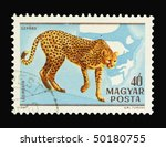 hungary   circa 1981  a stamp... | Shutterstock . vector #50180755