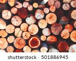 full frame round timber texture ... | Shutterstock . vector #501886945