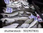 Baby Shark And Other Fish O...