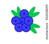 blueberry  blueberry icon ui ...