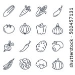 vegetables icon set outlined... | Shutterstock .eps vector #502457131