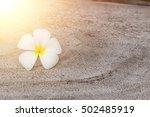 plumeria on old wood texture...   Shutterstock . vector #502485919