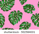 seamless pattern with monstera... | Shutterstock .eps vector #502584031