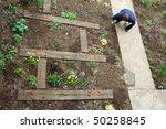 gardener planting new garden | Shutterstock . vector #50258845