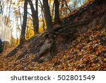 red and colorful autumn colors... | Shutterstock . vector #502801549