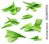 Small photo of Set of aloe vera leaves isolated on white background