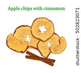 vector illustration of apples... | Shutterstock .eps vector #502823071