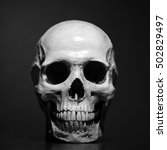 ultra sharp realistic human...   Shutterstock . vector #502829497