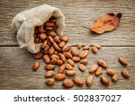 cocoa bean in hemp sack on the... | Shutterstock . vector #502837027