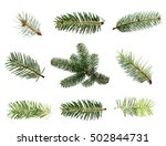 set fir tree branch isolated on ... | Shutterstock . vector #502844731