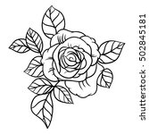 flowers roses  black and white. ... | Shutterstock .eps vector #502845181