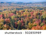 beautiful fall colors cover the ... | Shutterstock . vector #502850989