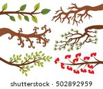 vector tree branches with... | Shutterstock .eps vector #502892959