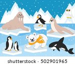vector arctic set with polar... | Shutterstock .eps vector #502901965