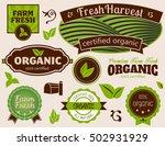 organic labels set of organic... | Shutterstock . vector #502931929