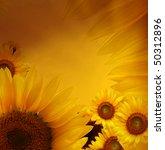 sunflower background   Shutterstock . vector #50312896