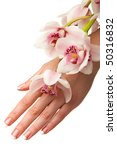 hand and orchid over isolated...   Shutterstock . vector #50316832