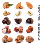 nuts isolated on white...   Shutterstock . vector #503220361