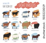 goat breeds icon set. animal... | Shutterstock .eps vector #503223019