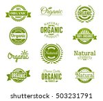 100  organic logo. collection... | Shutterstock .eps vector #503231791