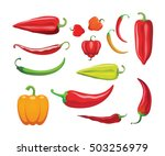 different sorts of hot peppers... | Shutterstock .eps vector #503256979
