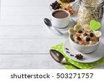 oatmeal porridge with dried... | Shutterstock . vector #503271757