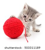Stock photo kitten with ball of yarn isolated on white background 503311189
