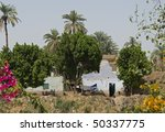 """A typical scene in Egypt near """"Luxor"""" - stock photo"""