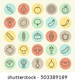 set of isolated universal... | Shutterstock .eps vector #503389189