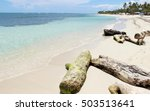 dominican republic   caribbean... | Shutterstock . vector #503513641