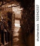 lonely alleyway   Shutterstock . vector #503542537