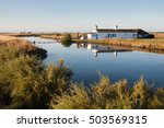 Small photo of Landscape of Beauvoir-sur-mer, Vendee, France