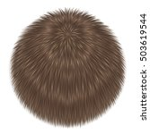 beige fluffy vector isolated.... | Shutterstock .eps vector #503619544