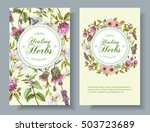 vector wild flowers and herbs... | Shutterstock .eps vector #503723689