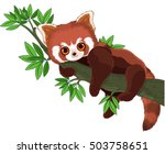 panda on a tree branch | Shutterstock .eps vector #503758651