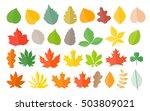 different color autumn leaves...
