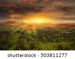 doi mea sa long at sunset ... | Shutterstock . vector #503811277
