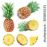 set from pineapples isolated on ... | Shutterstock . vector #503853151