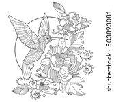 hummingbird colibri coloring... | Shutterstock .eps vector #503893081