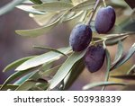 black olives with leaves on a... | Shutterstock . vector #503938339