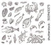 seafood elements set. hand... | Shutterstock .eps vector #503965375