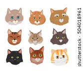 different breed cat's faces.... | Shutterstock .eps vector #504018961