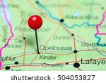 kinder pinned on a map of... | Shutterstock . vector #504053827