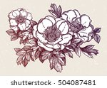 flowers isolated vector... | Shutterstock .eps vector #504087481