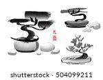 set of bonsai pine trees hand... | Shutterstock . vector #504099211