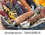 colorful indian corn in a...   Shutterstock . vector #504100819