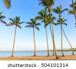 beautiful tropical landscape of ...   Shutterstock . vector #504101314