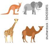 set of animals  elephant  camel ... | Shutterstock .eps vector #504203851