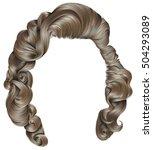 trendy woman hairs   blond... | Shutterstock .eps vector #504293089